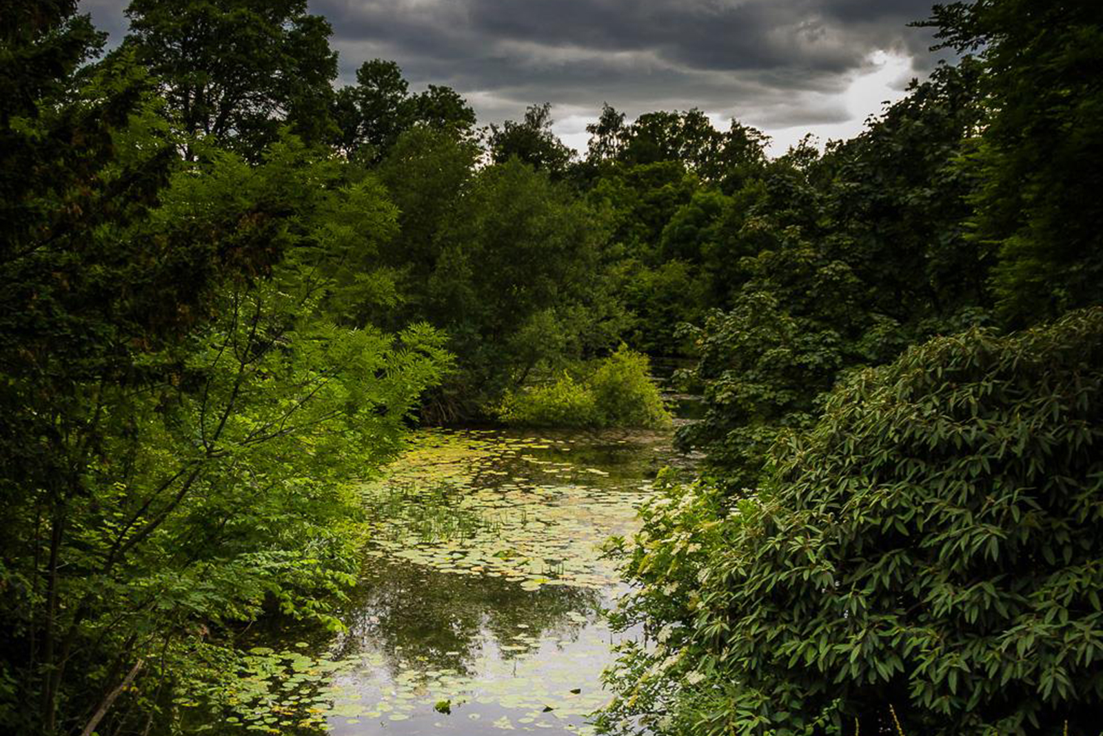 Pond and Storm
